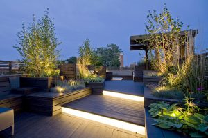trees-for-roof-gardens